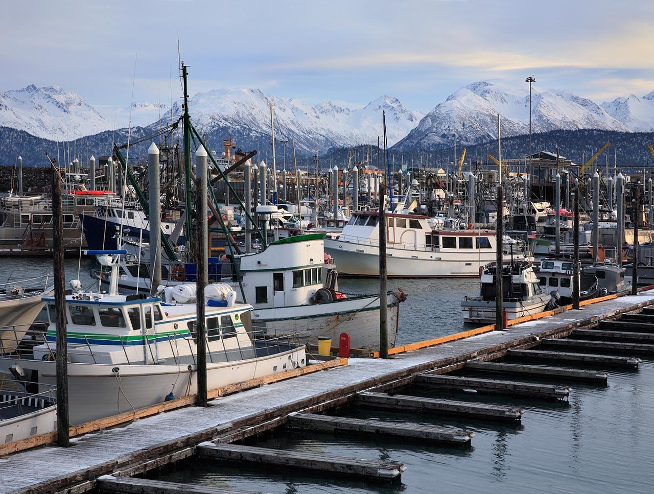 Many boats at a dock.