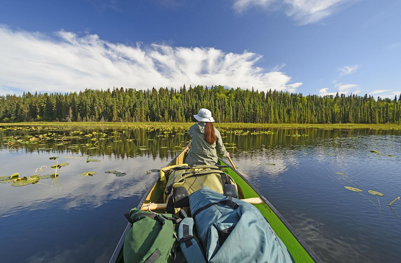 Canoer on Waterfowl Lake