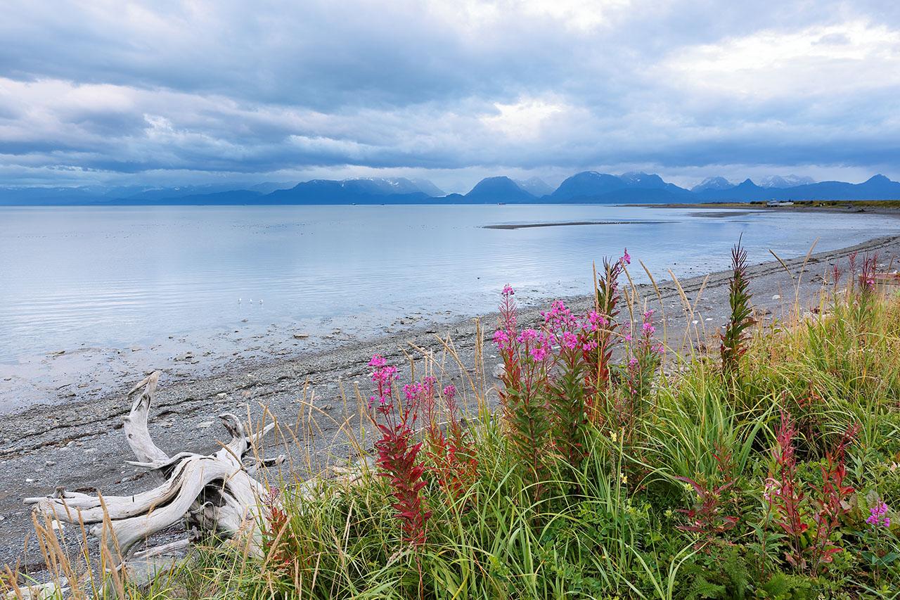 Alaska shoreline.